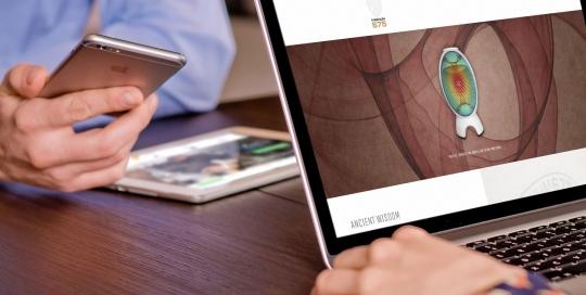 magnum675 web design